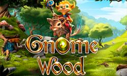 gnome world slot microgaming